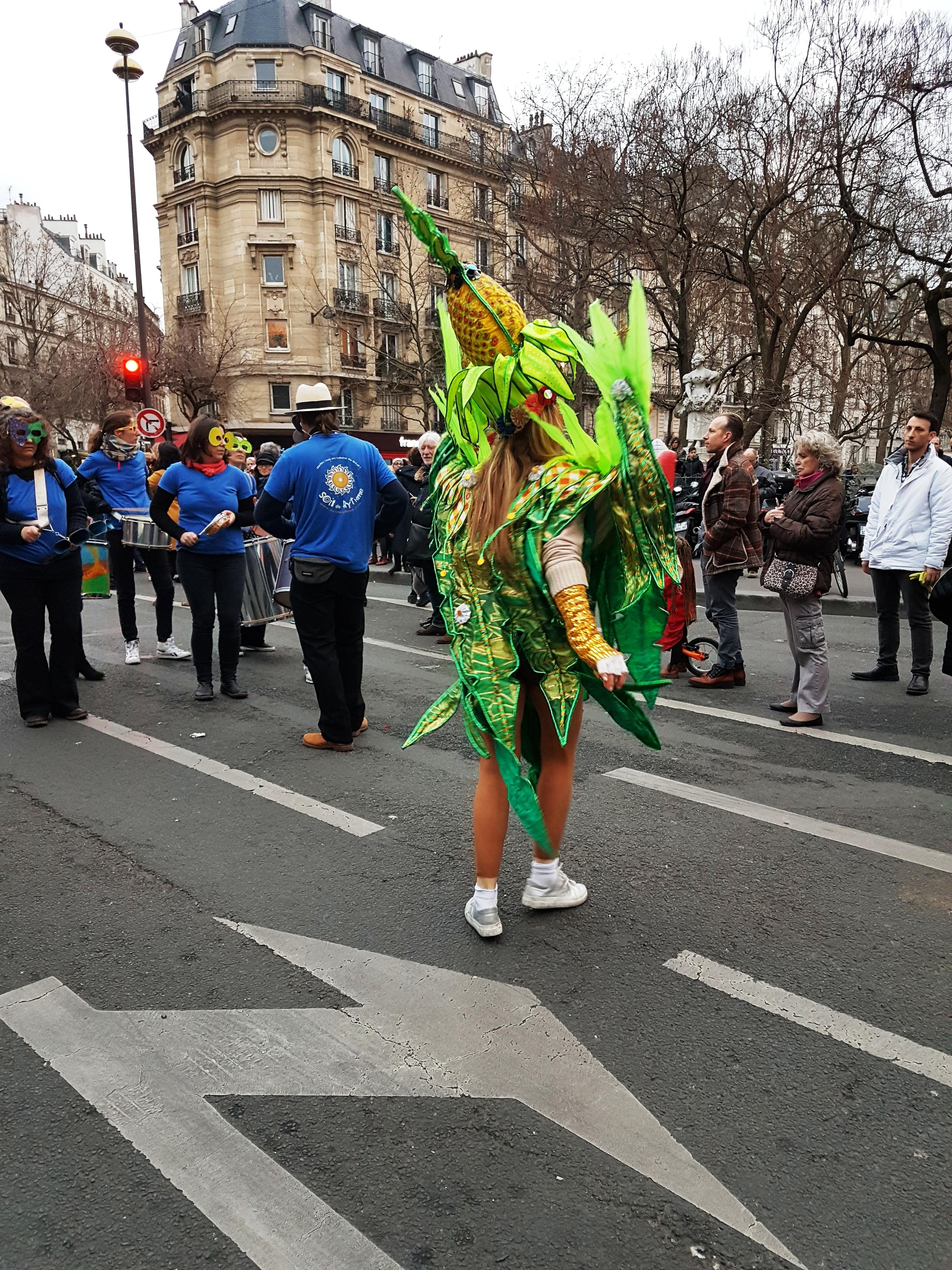 13 photos du carnaval de paris 2017 faites par daumale carnaval de paris 2018 - Carnaval de paris 2017 ...